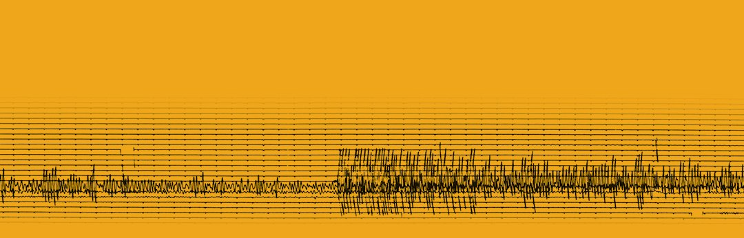 Seismic waves from the 1989 Loma Prieta earthquake
